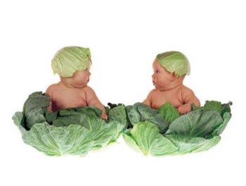 Два ребенка в капусте